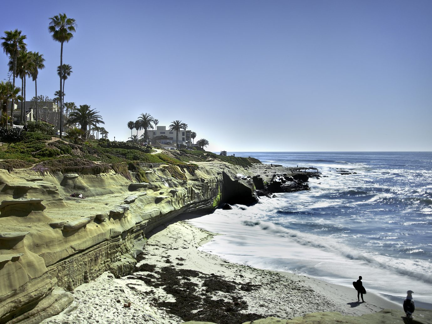 La Jolla Shores Coastline, San Diego California USA