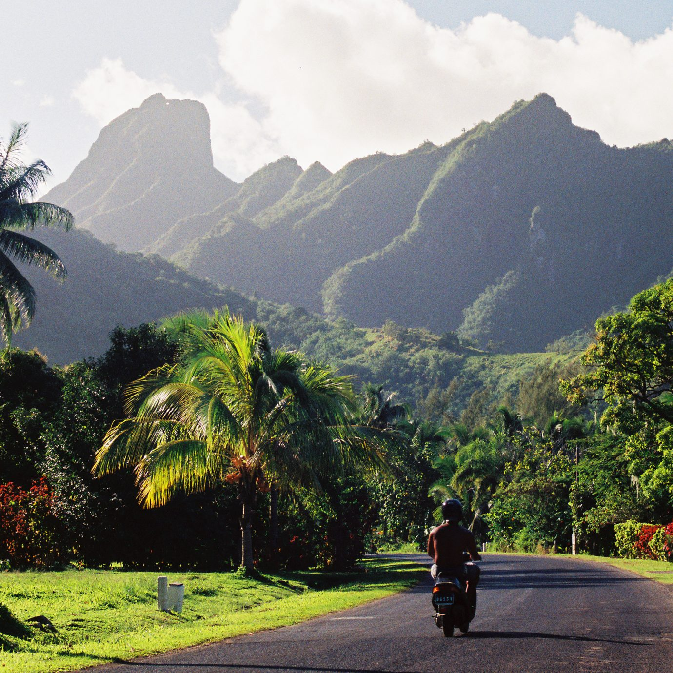 A motorcycle rider rides down a quiet polynesian road on a sunny day