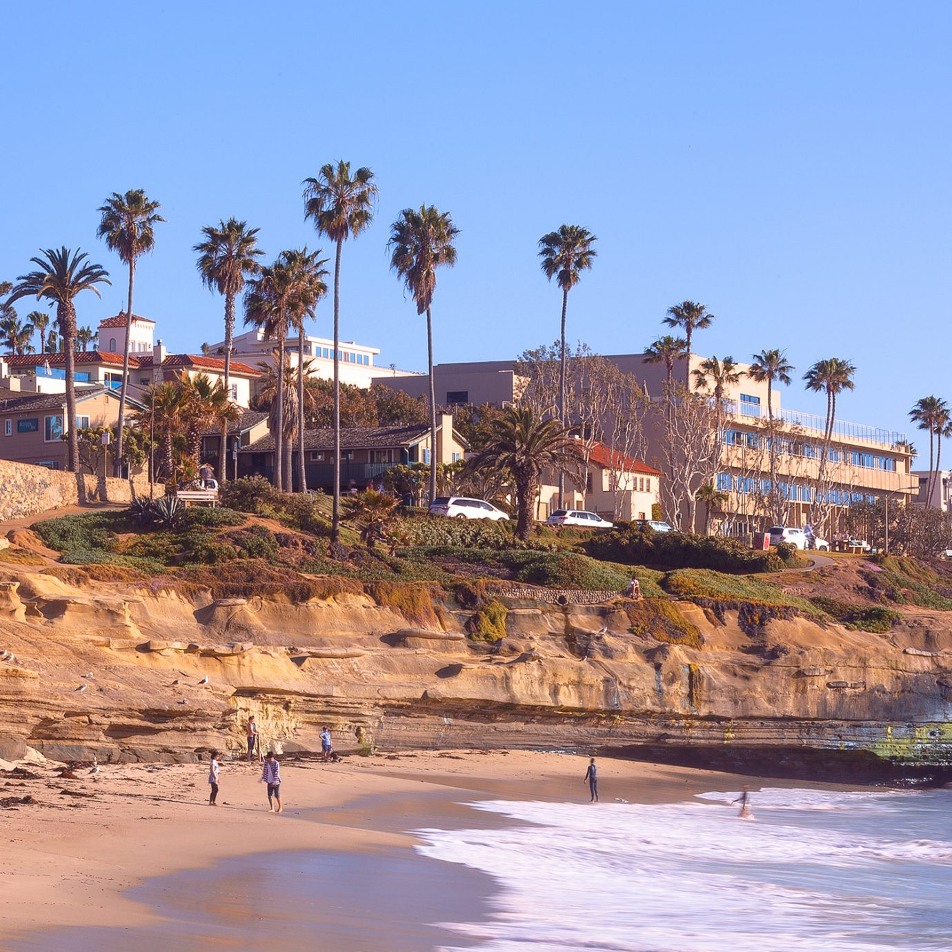 Sunset Cliffs Shoreline in Sunny San Diego, California USA