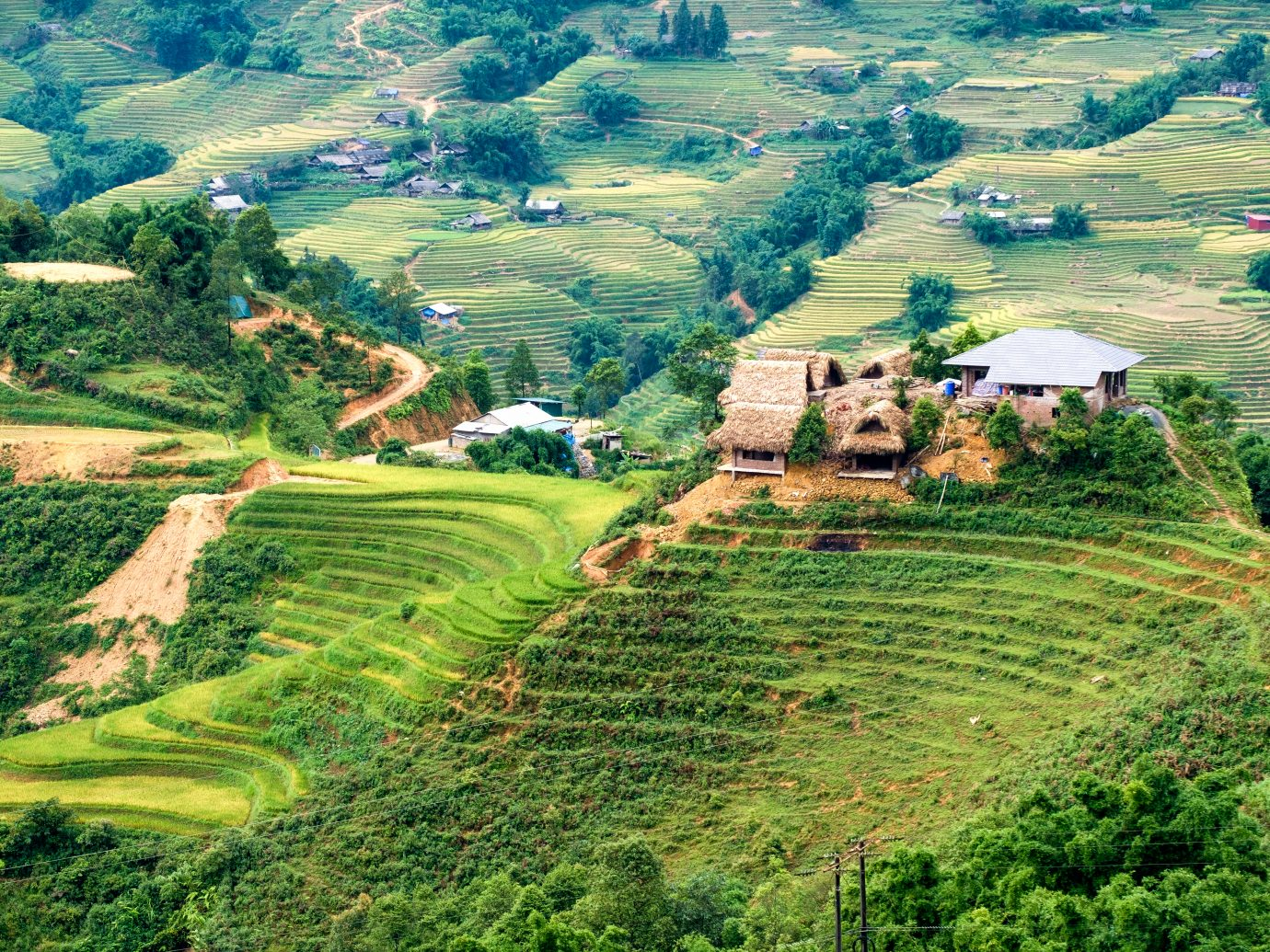 Cottage house on rice field terraced in valley