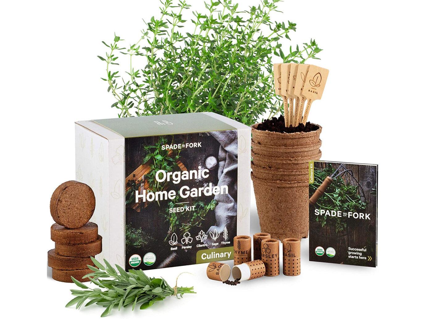 windowsill herb garden.