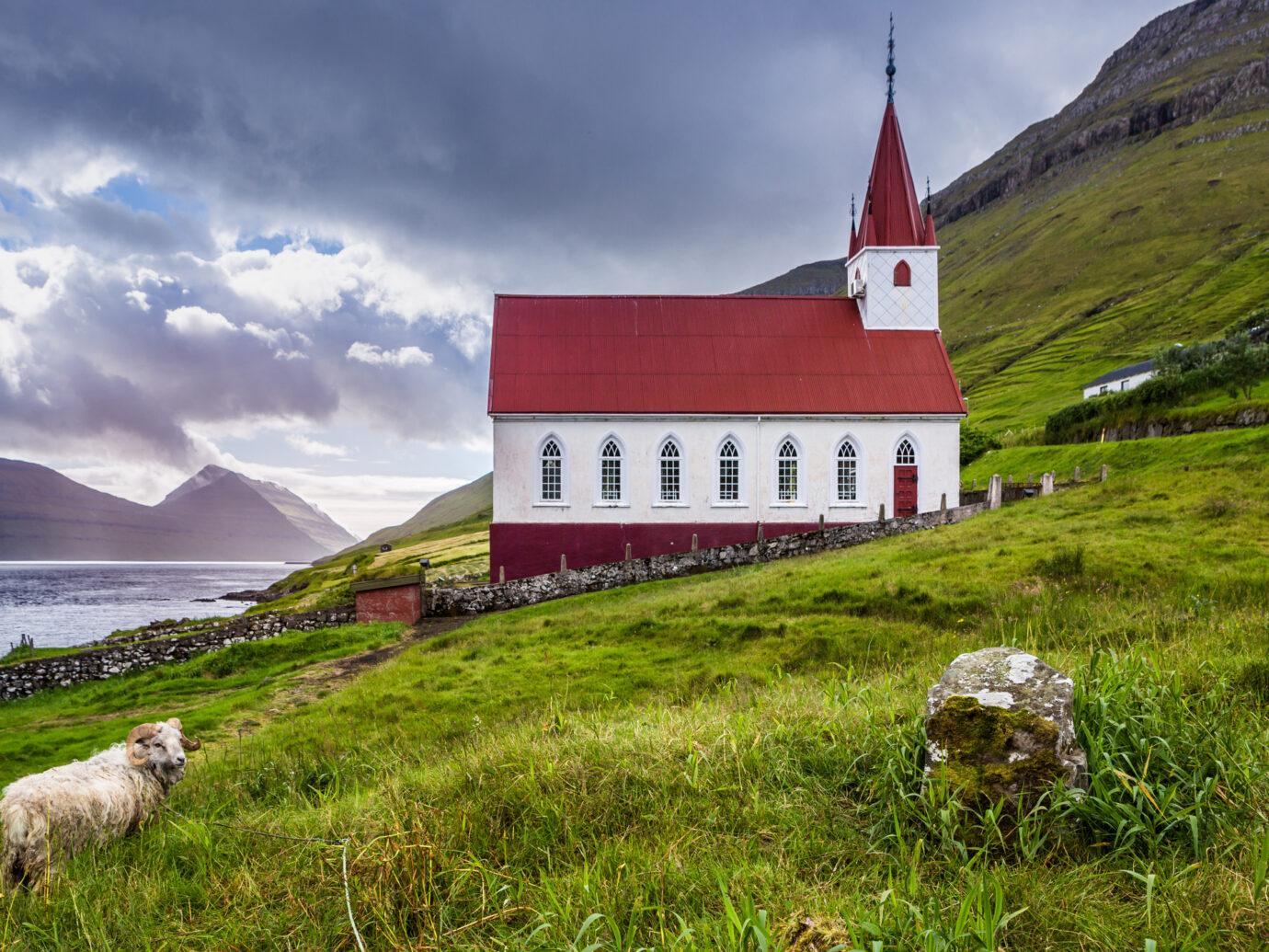 Kalsoy church in Faroe Islands whit sheep