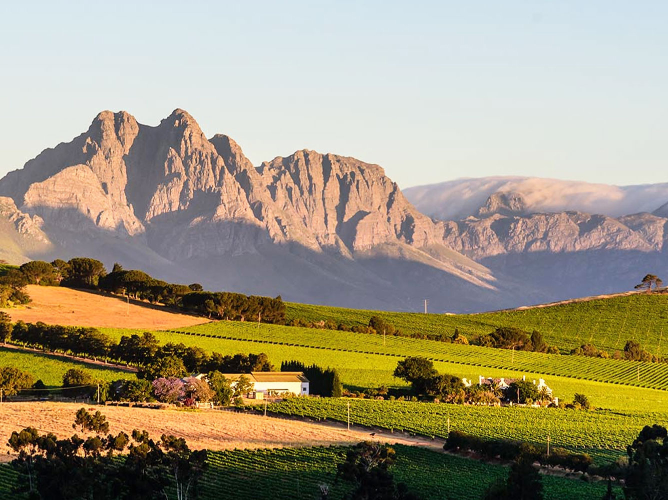 Cape Town Wine Country